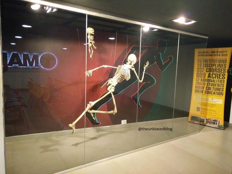 Manipal Anatomy Museum